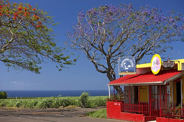 Mauritius_Traditional grocery shop ©MTPA